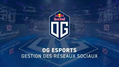 OG Esports - Gestion des Réseaux Sociaux